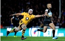 Wasps stung by O'Flaherty's efforts